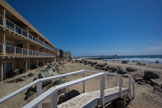 on the sand development opportunity ~ imperial beach