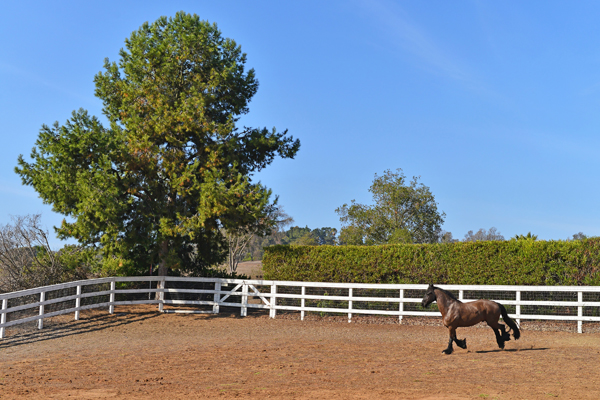 rancho santa fe real estate11